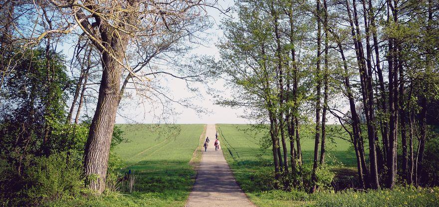 Bilder Inge 137_dk_1